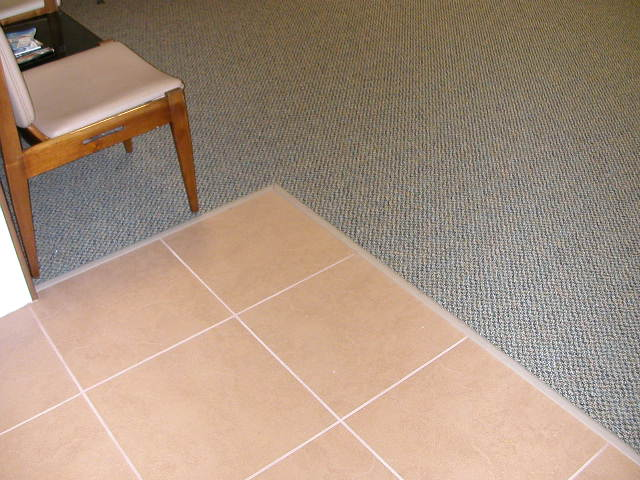 Transition Between Porcelain Tile And Carpet